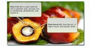 palm kernel oils soap, palm oil soap recipe, vegetable oils soap recipe,